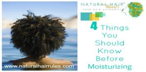 Before Moisturizing Natural Hair
