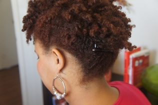 Twist Out Updo with Hair Combs
