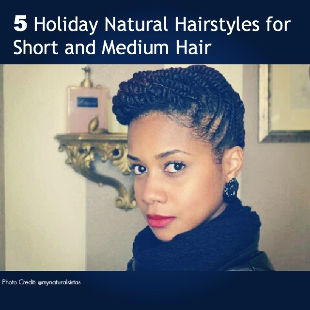 short medium natural hairstyles : Holiday Updos for Short and Medium Natural Hair We Have Moved To ...